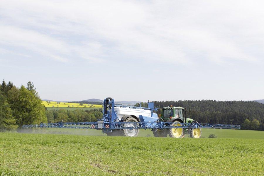agrio-mamut-5
